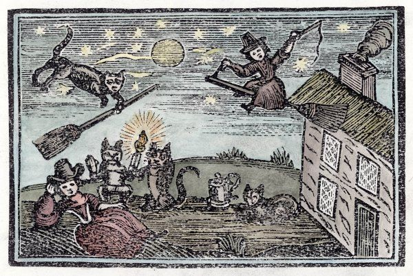 Witches with their familiars, one of which has learnt to fly a broomstick on its own !