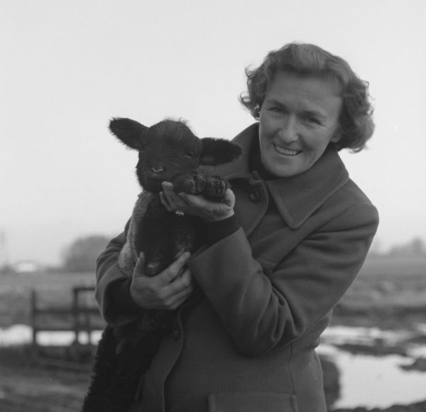 A woman wearing a warm overcoat, holding a black-faced lamb in a muddy field. (2 of 2)