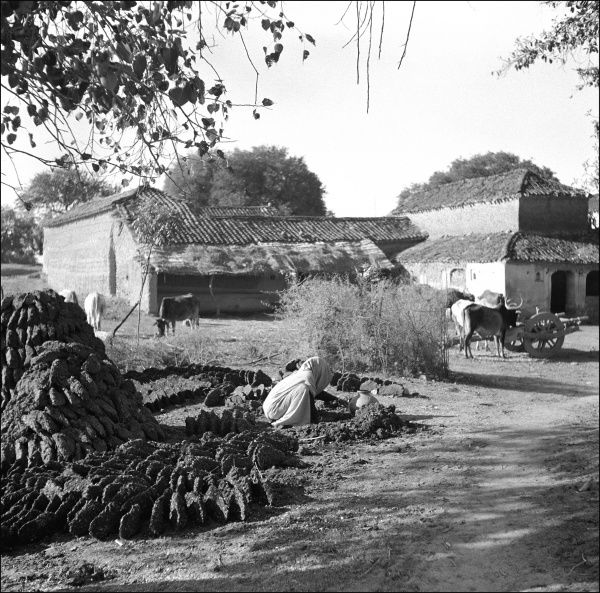 Scene in a village Madhya Pradesh Province, India with a woman making waht appear to be mudbricks, although these could be roofing tiles or dung fuel (?). Photograph by Ralph Ponsonby Watts