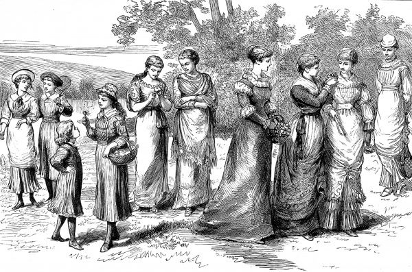 Engraving showing a group of women in types of 'Rational Dress', shown at the Exhibition of Hygienic Costume, 1882