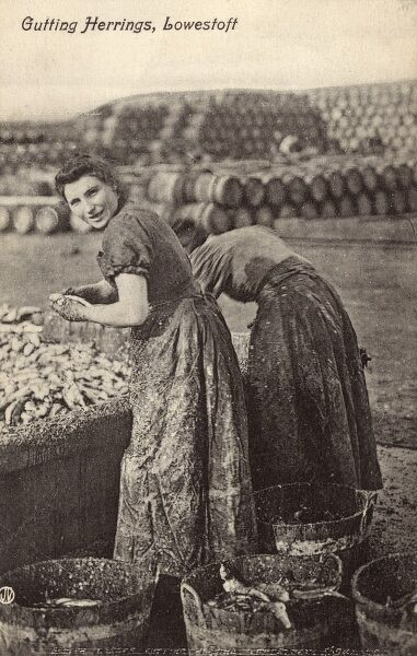 Women gut Herring at Lowestoft, Suffolk Date: circa 1910s