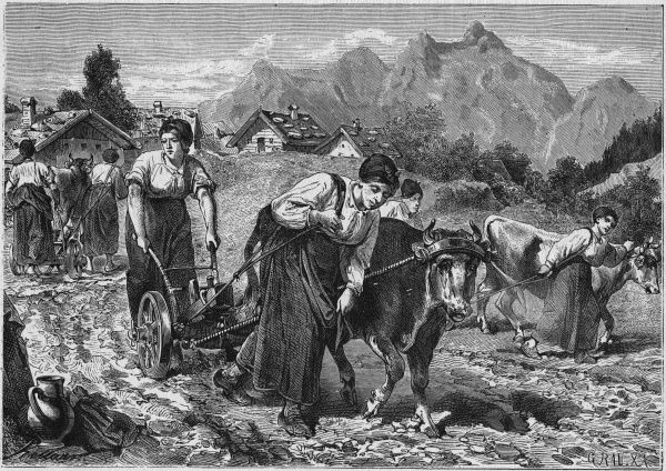 In Carinthia the plowing is done by women and oxen working in harness together
