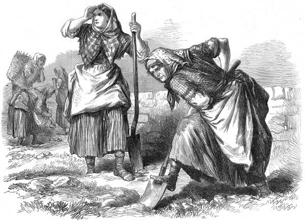 Peasant women in Roscommon, Ireland, working in the field digging the earth with shovels
