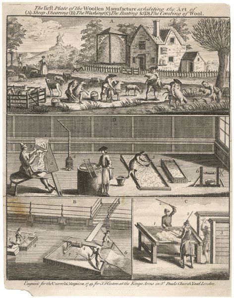 Early processes in the manufacture of wool: sheep shearing, washing, beating, combing