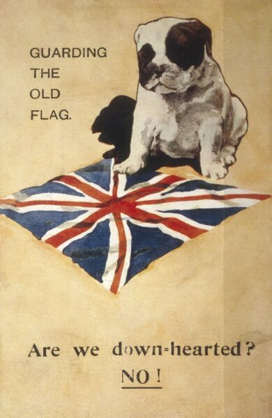 Patriotic bulldog guards the flag: Are we down-hearted? No! Date: 1914-18