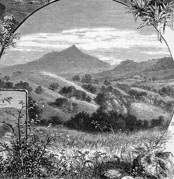 Engraving of distant view of Needle Arch Mountain and the surrounding undulating countryside where gold was found and mined in the nineteenth century, 1876-1886