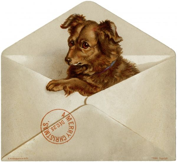 A dog pops out of the envelope to wish everyone a merry Christmas.  1896