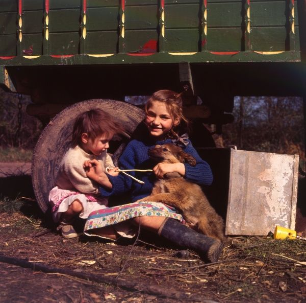 Two young gipsy girls playing with a dog at an encampment in the Newdigate area of Charlwood, Surrey. They are sitting on the ground at the side of their caravan