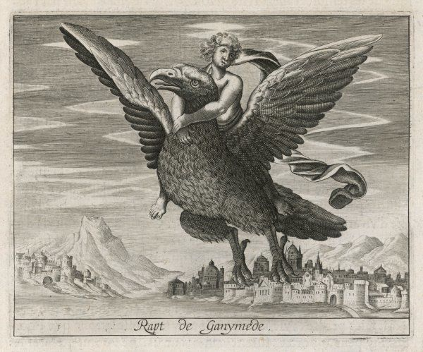 Zeus sends one of his eagles to abduct the dishy Trojan youth Ganymede to be the cup-bearer of the Gods