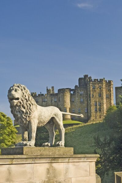 Alnwick United Kingdom  city photos gallery : alnwick castle from the lion bridge alnwick northumberland ...