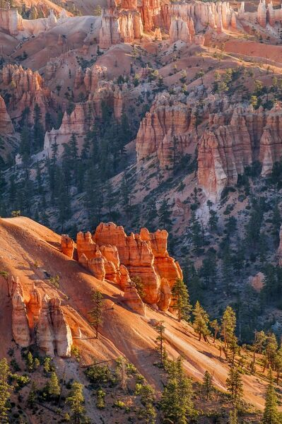 Bryce Canyon National Par United States  city pictures gallery : Bryce Canyon National Park, Utah, United States of America, North ...