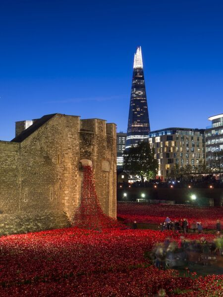 Ceramic poppies forming the installation Blood Swept Lands and Seas of Red to remember the Dead of the First World War, Tower of London at dusk, London, England, United Kingdom, Europe