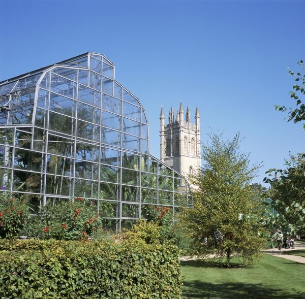 Glass house and Magdalen College Tower, Oxford Botanic Gardens, Oxford, Oxfordshire, England, United Kingdom, Europe