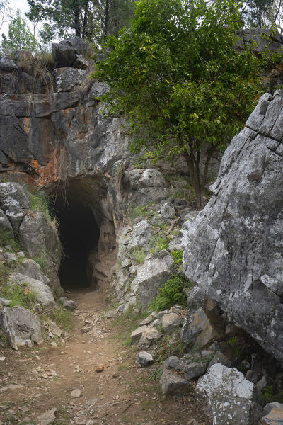 Entrance to the Ashford Caves, a cave system of coralline limestone. Phosphate was mined in the past for use as fertiliser. The caves are also home to a colony of Eastern Bent-wing bats (Miniopterus fuliginosus). Kwiambal National Park