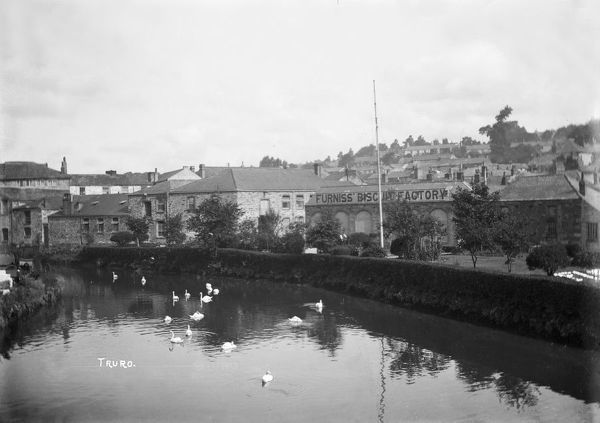 A view of Furniss Island from Boscawen Bridge showing Furniss' Biscuit Factory with mute swans in the River Allen. Photographer: Arthur Philp
