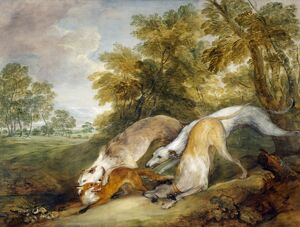 Gainsborough - Greyhounds coursing a Fox J920623