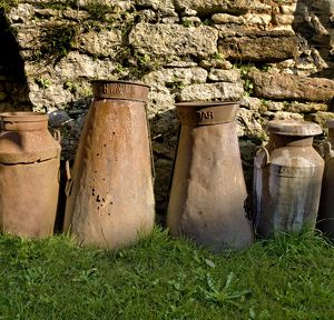 Milk churns DP068967