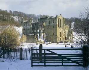 Rievaulx Abbey J860015