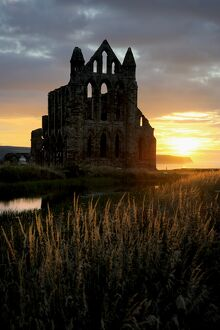 Whitby Abbey at sunset N080799