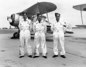 Lorimer, Feeny and Dewdney of 87 Squadron