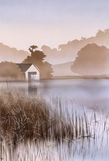 Evening lakeside scene with reeds