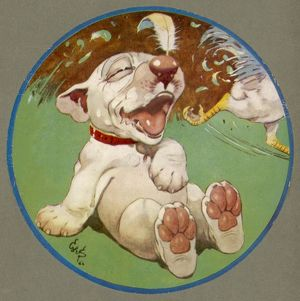 A Feathered Bonzo - cover of the Third Studdy Dogs Portfolio