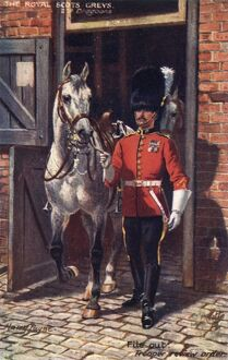 The Royal Scots Greys - 2nd Dragoons