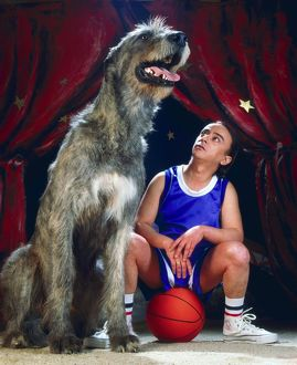 Dog - Irish Wolfhound next to man sitting on basketball