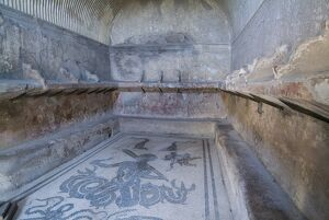Bath house mosaic from Herculaneum