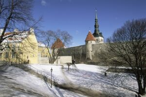 The Old Town in winter, Tallinn, UNESCO World Heritage Site, Estonia, Baltic States