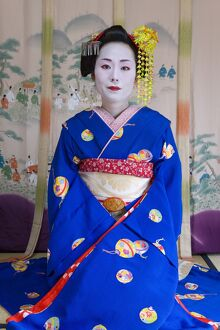Portrait of a Geisha in a traditional Japanese style tatami mat room