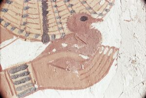 Wall painting of bird in hand in the tomb of Nakht, Minister of Agriculture in the reign of Tutmosis IV, Valley of the Nobles, Thebes, UNESCO World Heritage Site, Egypt, North