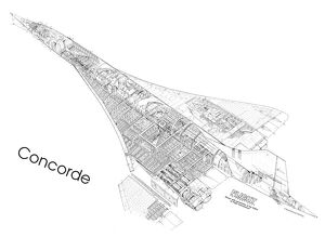 Concorde First Cutaway Drawing