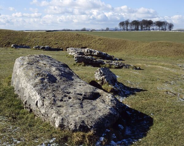 ARBOR LOW STONE CIRCLE, Derbyshire. Detailed view of the neolithic monument showing the Derbyshire Dales in the background