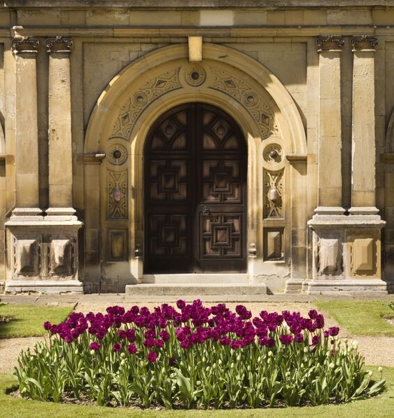 AUDLEY END HOUSE, Essex. Detail of the East door and bed of tulips in the parterre gardens