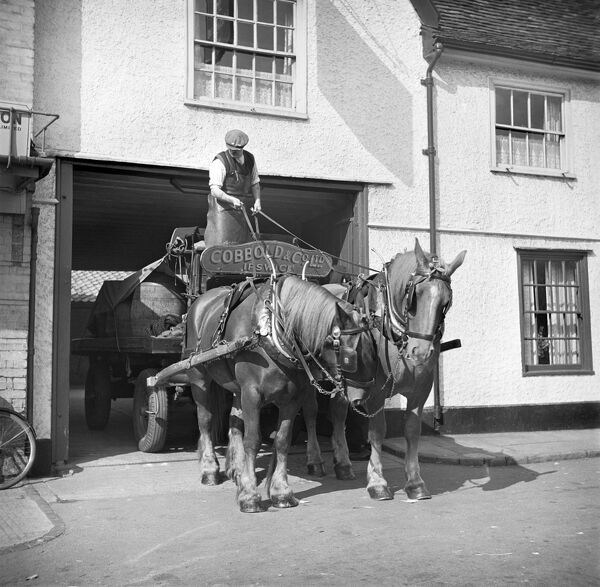 Ipswich, Suffolk. A Cobbold & Co dray emerging from the yard of the Saracens Head. Brewers were often local firms and supplied public houses within a small radius. Drays were well adapted working vehicles, and two horses could pull ten or 12 barrels