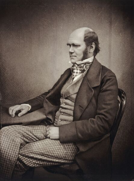 DOWN HOUSE, Downe, Kent. A sepia toned portrait of Charles Darwin, c1859