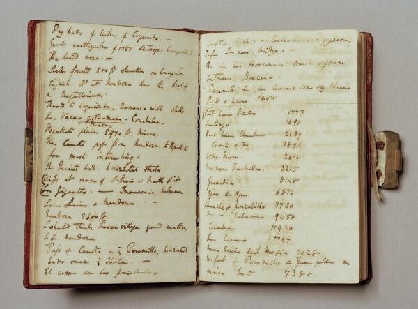 "DOWN HOUSE, Kent. Two pages of text from one of Charles Darwin's note books from the ""Beagle"" voyage"