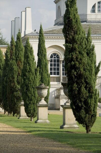 CHISWICK HOUSE AND GARDENS, London. A view of the trees and urns lining the garden footpath with the north front of the house in the background