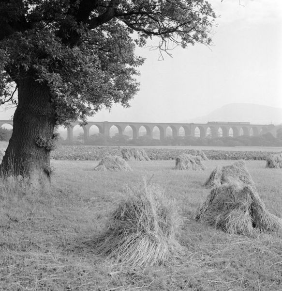 CONGLETON VIADUCT, Cheshire. General view of the Congleton Viaduct across agricultural land. There is a train crossing. Photographed by Eric de Mare (active 1945-80)
