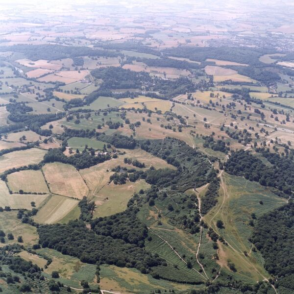 Eastnor Park, Malvern Hills, Herefordshire. An aerial view looking over Eastnor Park on the Malvern Hills. Eastnor Castle is hidden amongst the trees in the centre of this photograph. Photographed in July 1999