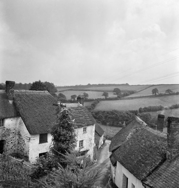 A view from an elevated position over an unidentified village lane, showing foliage in the foreground, with thatched cottages and a rural landscape of fields beyond. Probably located in Devon or Somerset. Photographed by John Gay. Date range