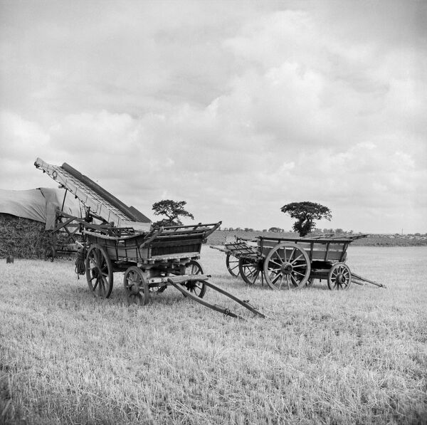 Freethorpe, Norfolk. These two traditional horse-drawn farm wagons would still have been in regular use when this photograph was taken. Behind, a portable elevator was used to build the haystacks. Photographed by Hallam Ashley in September 1959