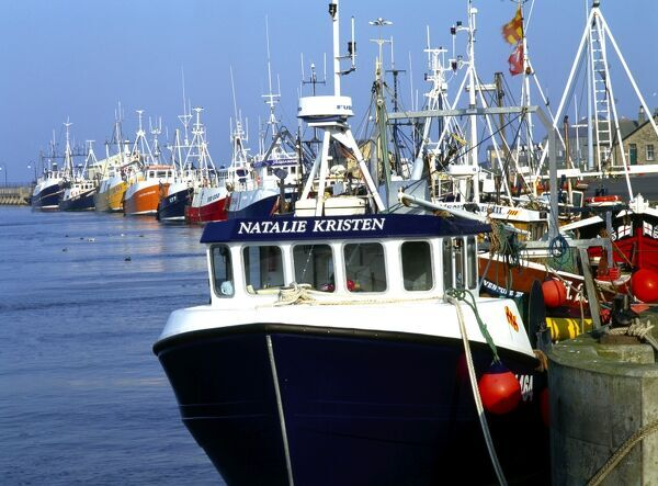 AMBLE HARBOUR, Northumberland. View of fishing boats moored in the harbour