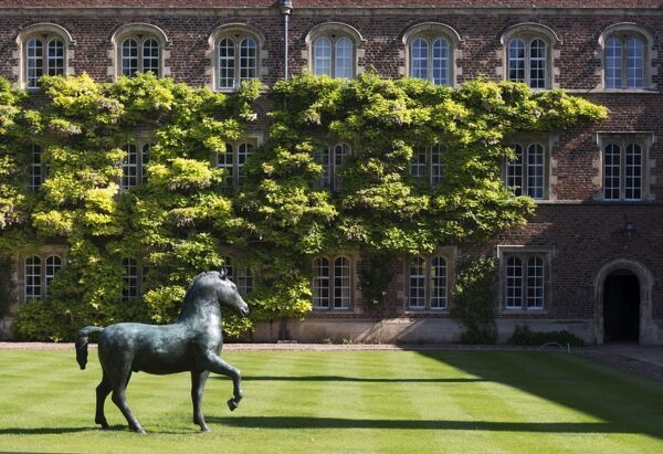 Jesus College, Jesus Lane, Cambridge, Cambridgeshire.   First Court, Bronze Horse, 1983, by Barry Flanagan. Photographed by James O. Davies, 2015