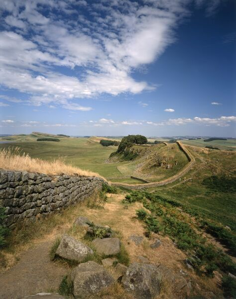 HADRIAN'S WALL, Northumberland. View along the Wall, looking east, located half a mile west of Housesteads. hadrian