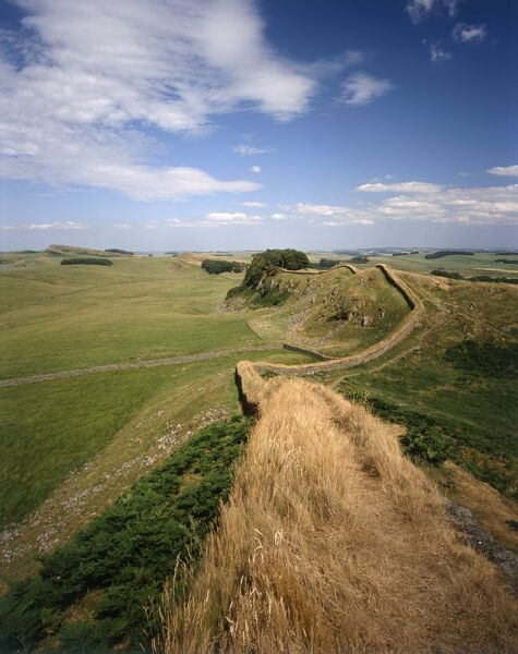 HADRIAN'S WALL, Northumberland. Hadrian's Wall winding over the rural landscape. hadrian