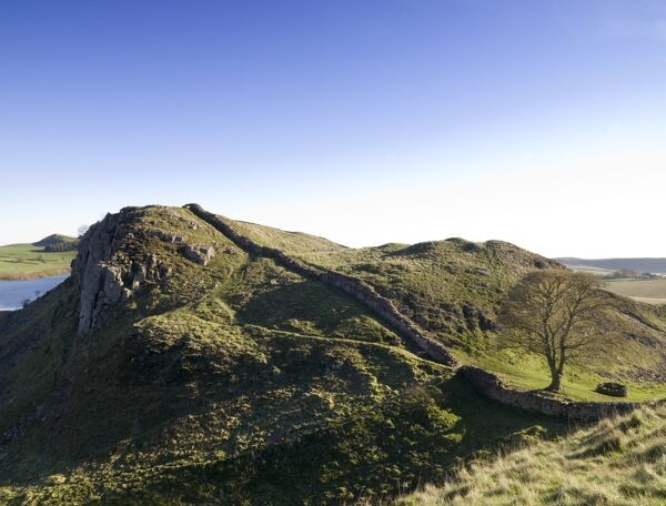 HADRIAN'S WALL, Northumberland. A view along the wall at Sycamore Gap near Steel Rigg. hadrian