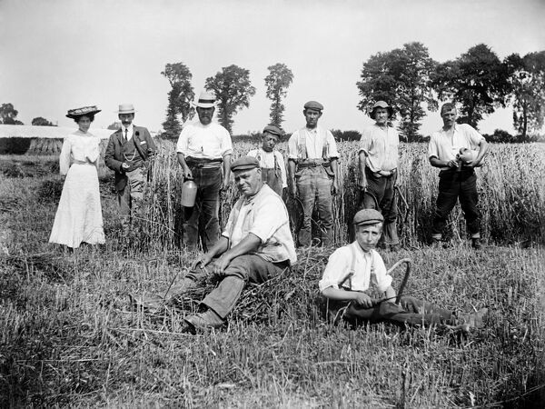 LOWER CADSDEN, Princes Risborough, Buckinghamshire. View of people in a field, including farm workers taking a break from harvesting, with a smart lady and gentleman. Photographed by Alfred Newton and Sons in 1903