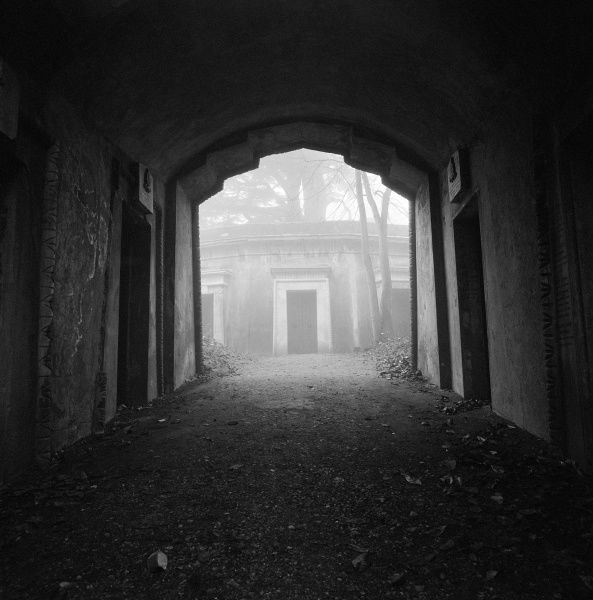 HIGHGATE CEMETERY, Hampstead, London. View from the Egyptian Avenue on a foggy day showing entrances to family vaults in the inner circle of the Lebanon Circle, West Cemetery. Photographed by John Gay in 1995